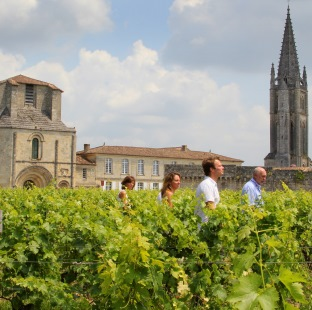 Saint-Emilion Afternoon